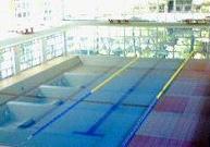 2004シンクロノート
